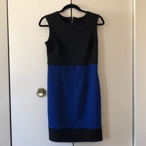 Carole Little Women's Dresses